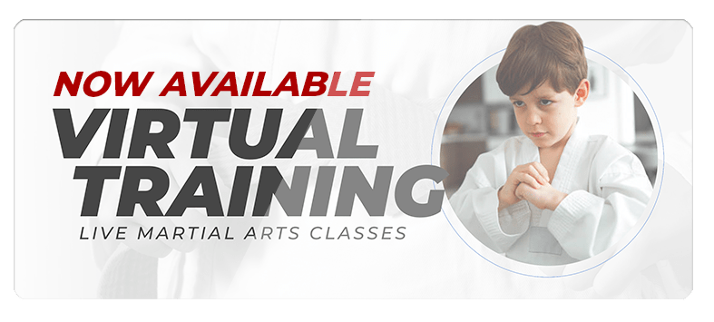 VIRTUALPOPUPSPARK.1.1, Cassady Martial Arts Academy Macomb IL