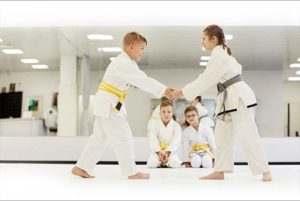 Kidsbjj3 300x201, Cassady Martial Arts Academy Macomb IL